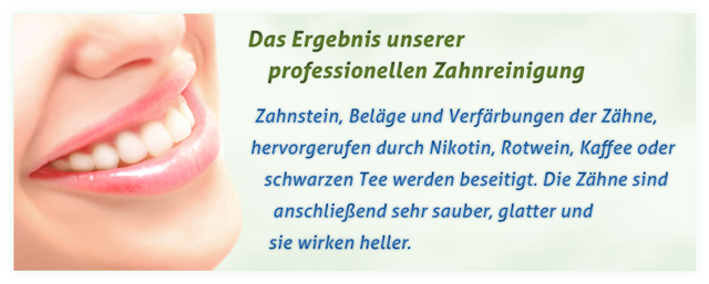 Zahnarztpraxis Steffi Bartel Professionelle Zahnreinigung